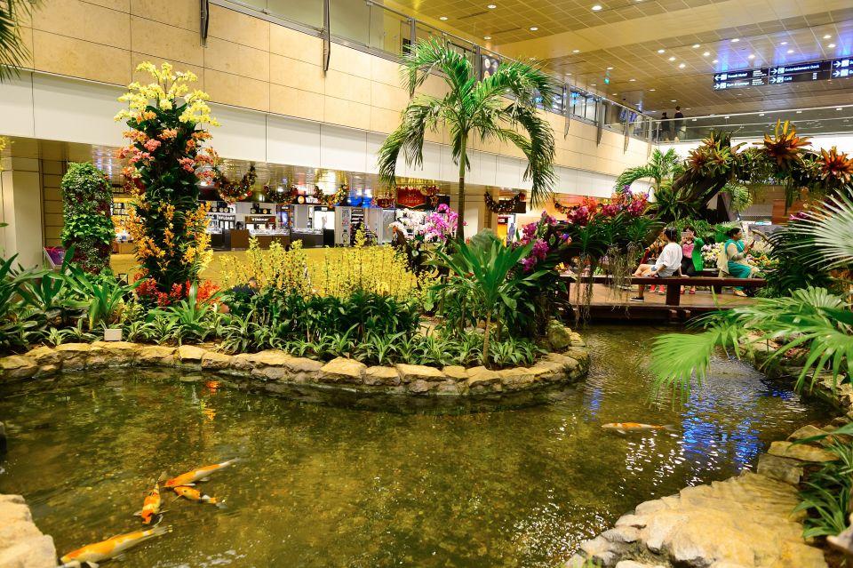 Jardin à l'intérieur de l'aéroport