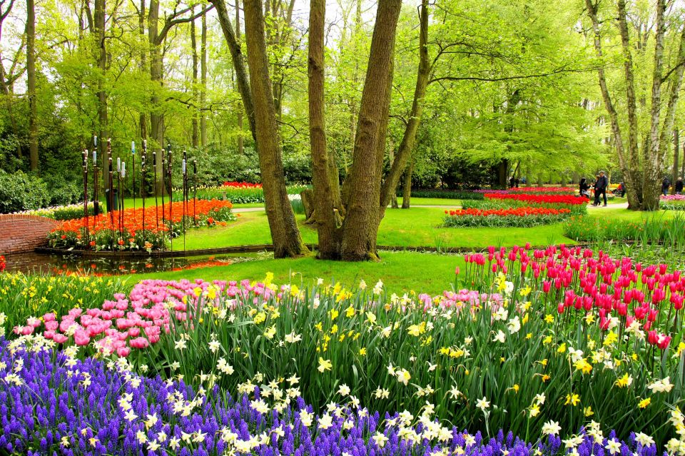 Le jardin ph m re keukenhof a ouvert ses portes easyvoyage for Jardin keukenhof