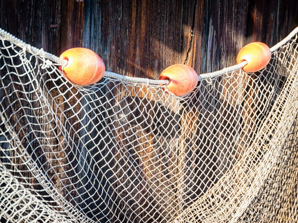 Die meeresschildkr te kommt zur ck easyvoyage for Rete da pesca arredamento