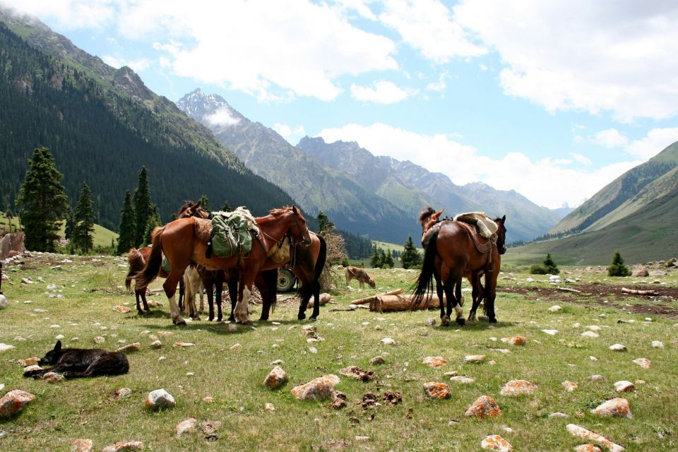 What to do in Kyrgyzstan