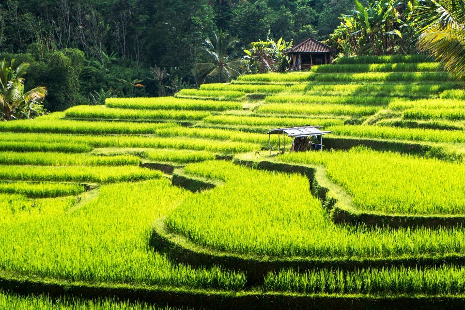 Make the most of perfect temperatures in Bali