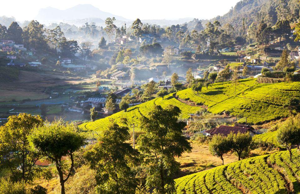 Pays - Sri Lanka