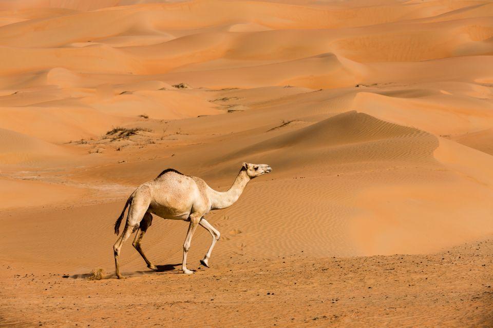 Die Rub-al-Khali Wüste