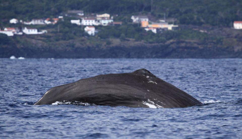 7. Île des Açores, Portugal
