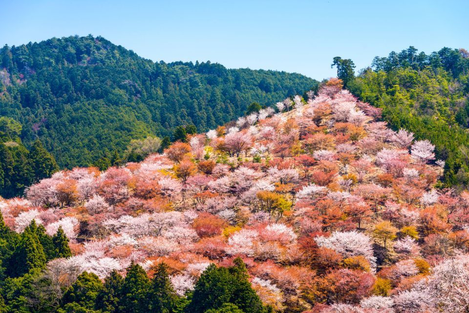 Mount Yoshino, Nara, Japan