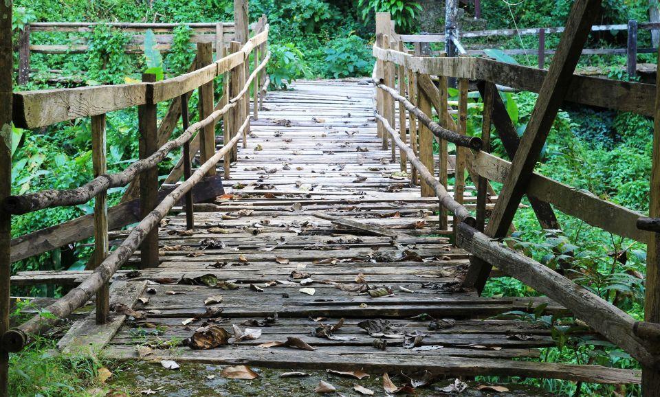 Chiang Mai jungle trekking