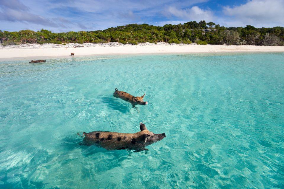 5-La Big Mayor Cay, Bahamas