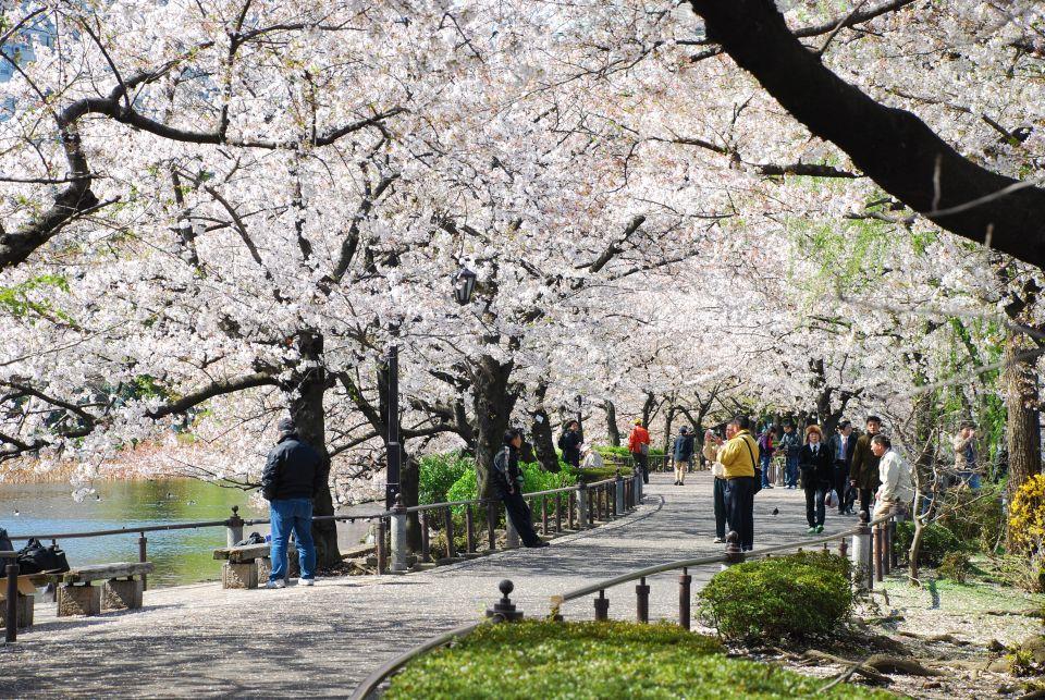Parco Ueno, Tokyo (Giorno uno)