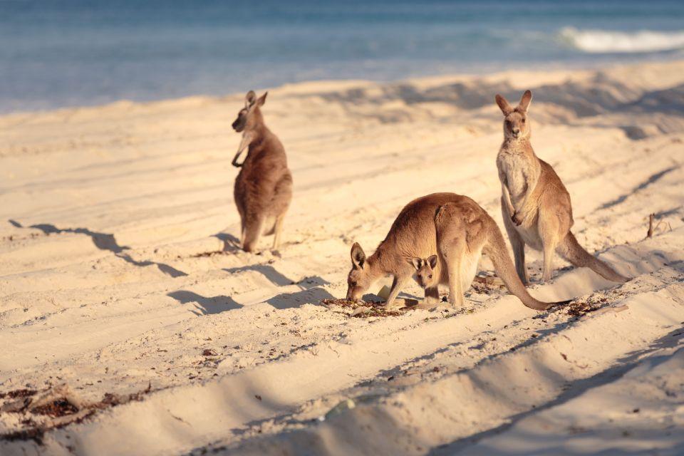 1. Kangaroo Island