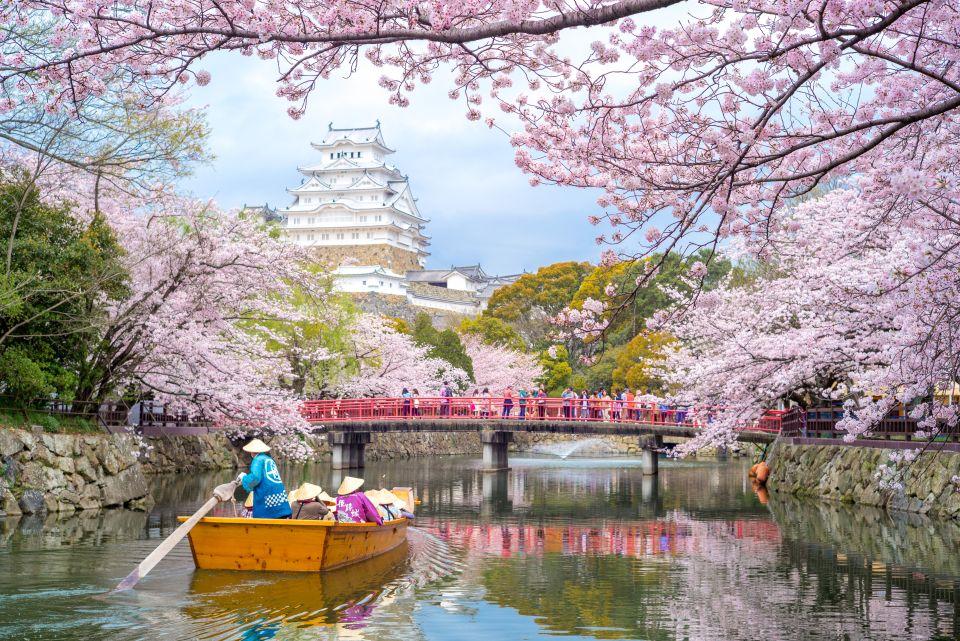 3. Los cerezos en flor de Japón