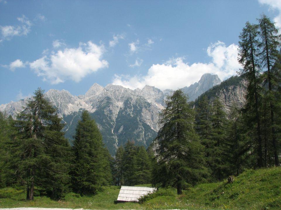 Le foreste di Pohorje