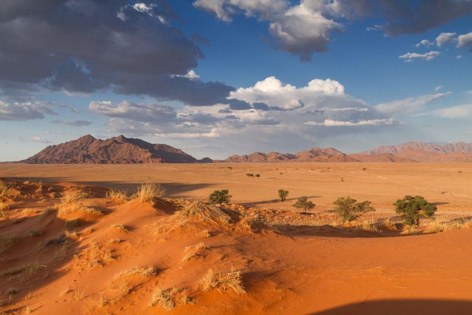 Deserto del Namib - Namibia