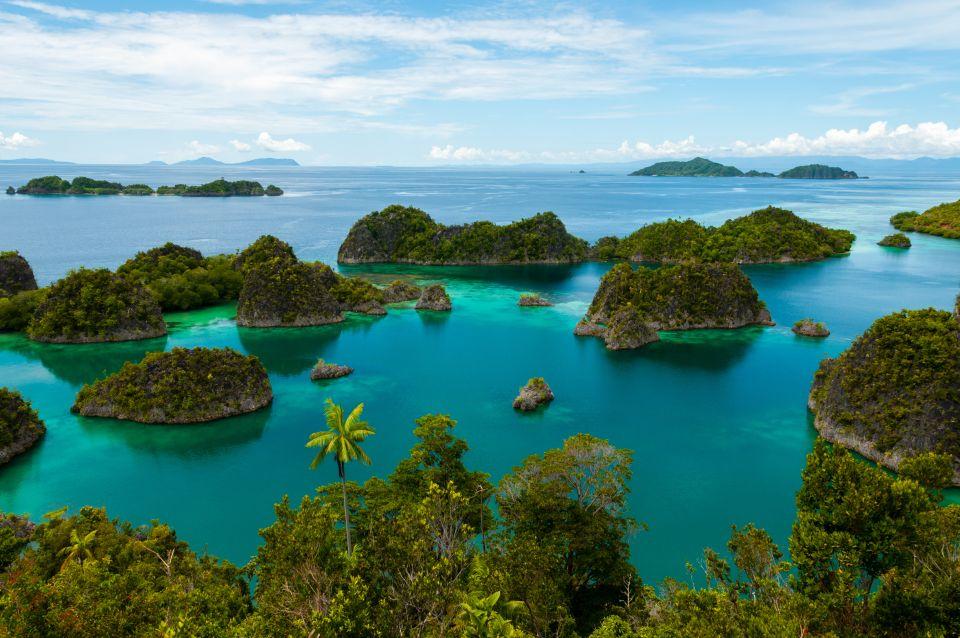 19) La Papouasie-Nouvelle-Guinée