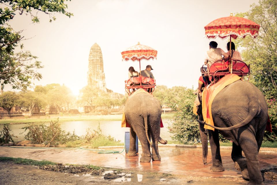 5. Elefantenreiten