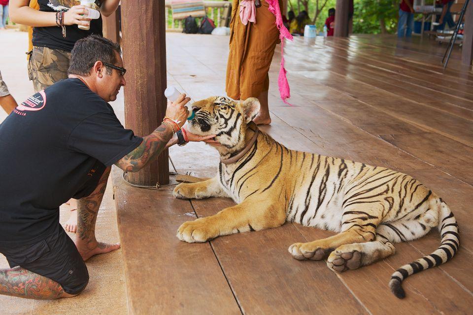 Tiger temples