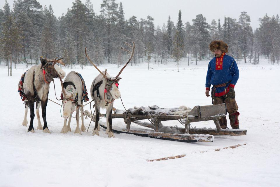 4. Die Sami in ihrer Rentieraufzucht besuchen