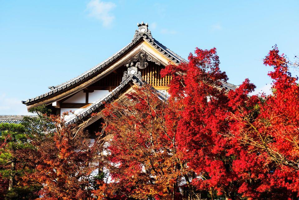 Vivre l'octobre rouge au Japon