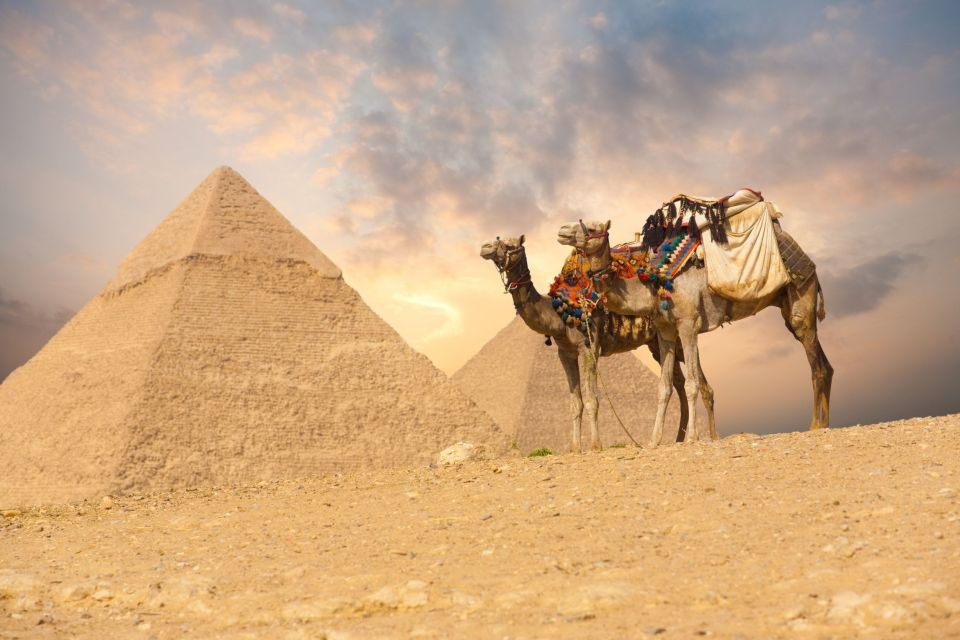 8. L'Egypte