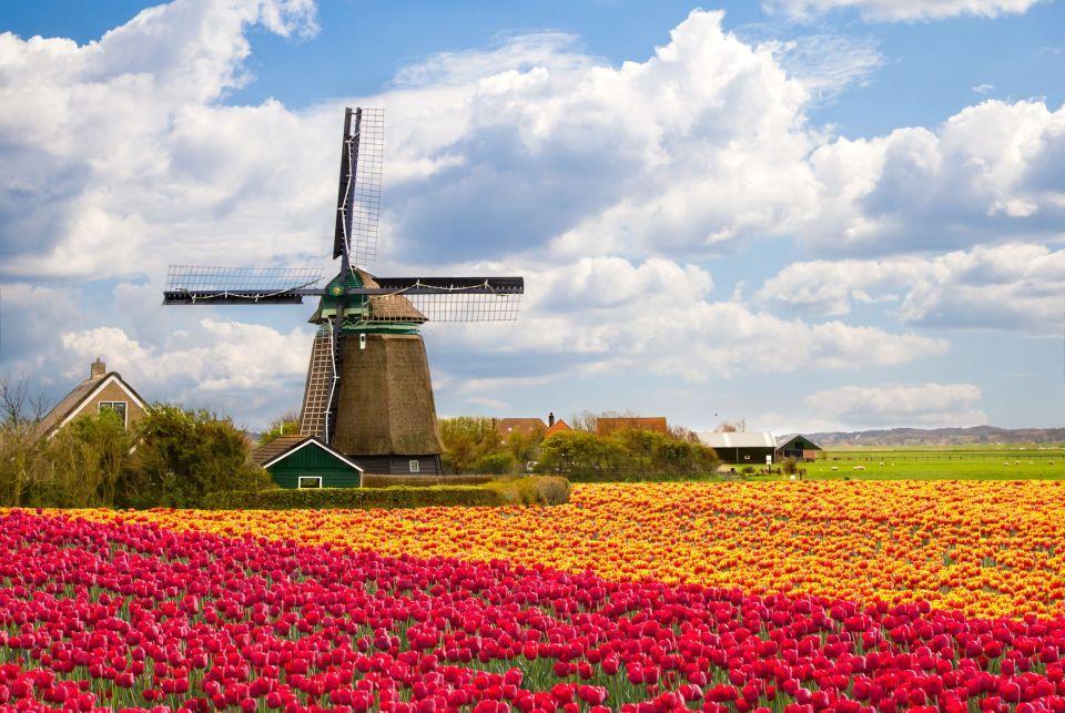 <b>5. Campos de tulipanes, Países Bajos</b>