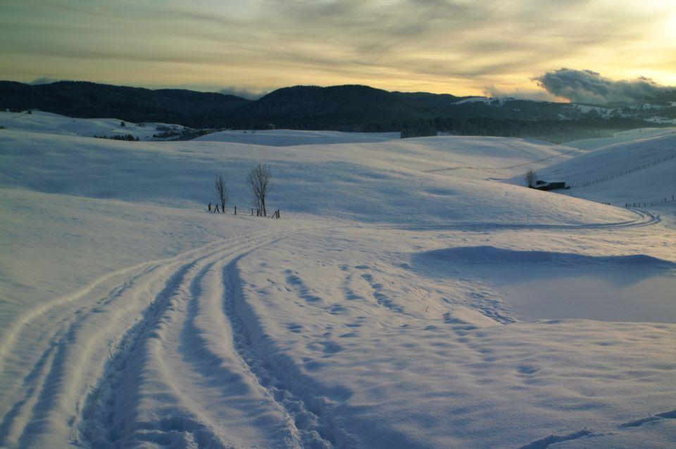 Scii di fondo sull'Altopiano di Asiago