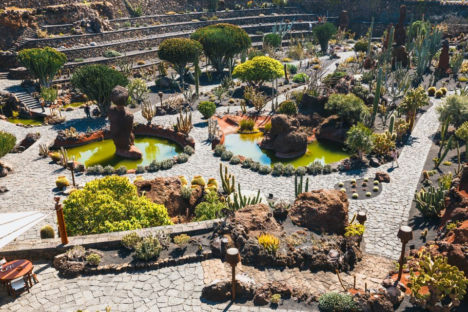 5. Jardin de Cactus