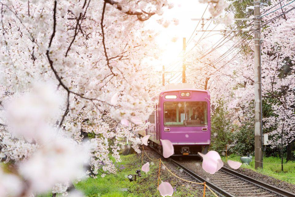 El túnel de los cerezos de Kioto