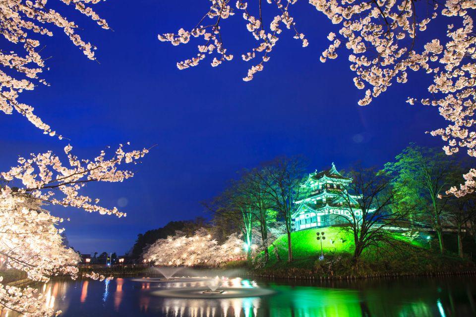 Cerezos nocturnos en el Parque Takada