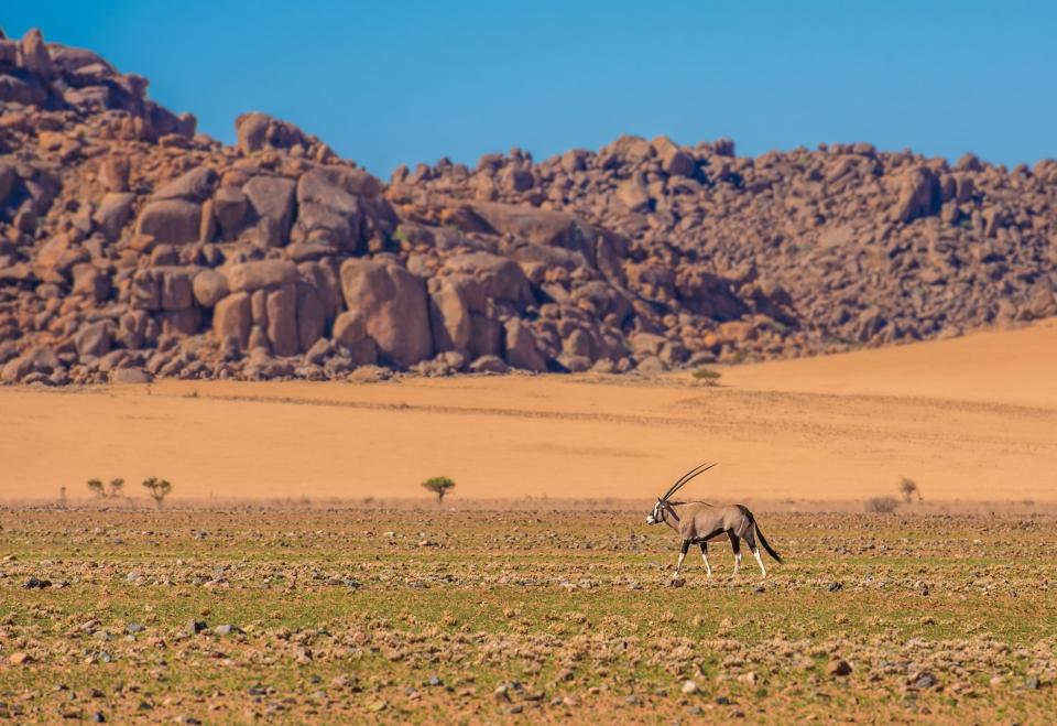 Le parc national de Namib-Naukluft