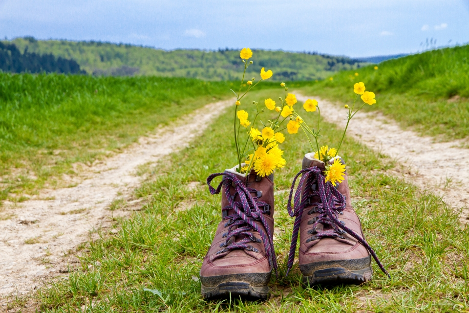 Lace up your hiking boots