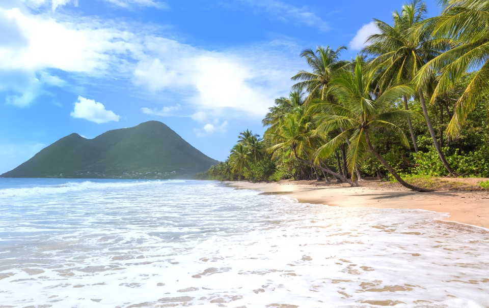Of all the Caribbean islands, why Martinique?