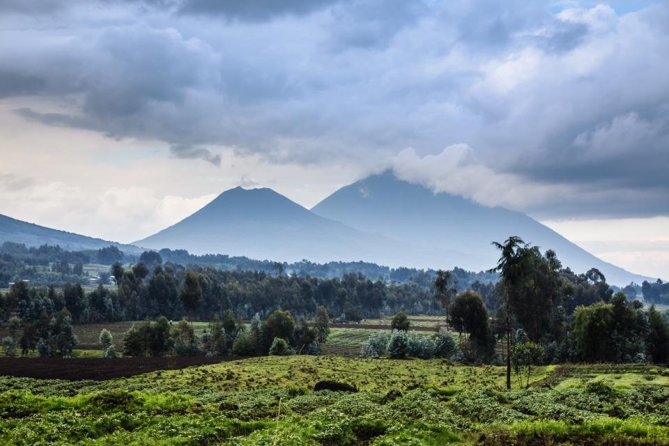 8. Volcanoes National Park, Rwanda