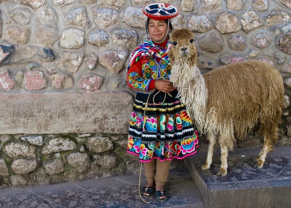 Get personal with llamas and alpacas at Mundo Alpaca
