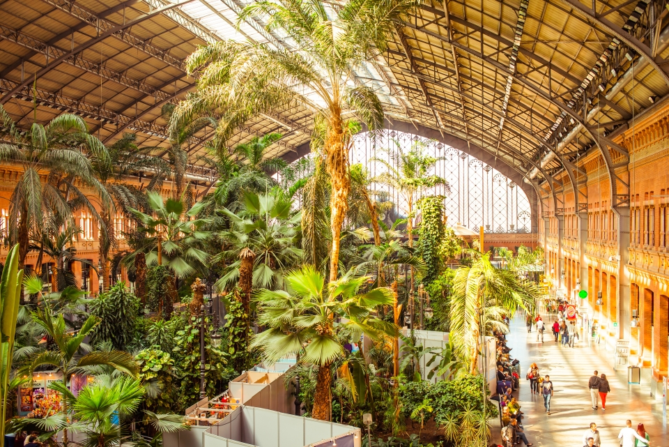 1. Atocha Station, Madrid, Spain