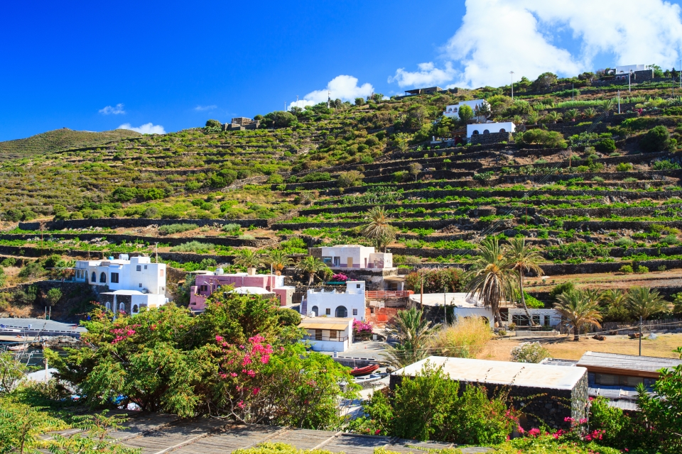 Agriculture on Pantelleria