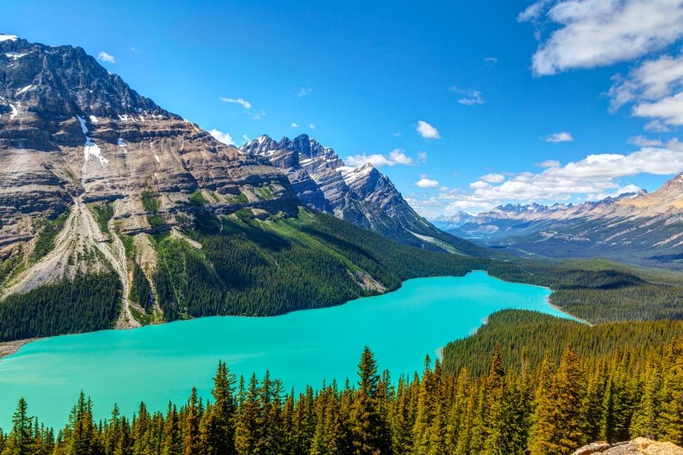 Lago Peyto, Alberta