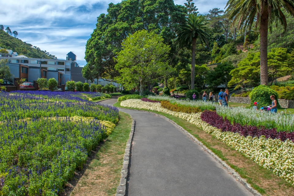 Take a morning stroll through the Botanic Garden