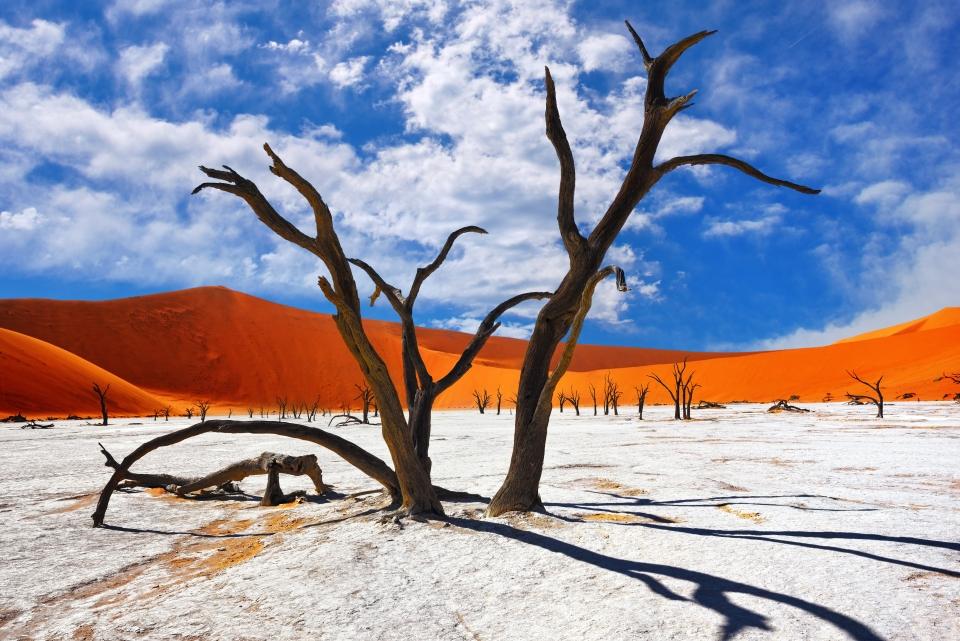 The Namib Desert, Namibia