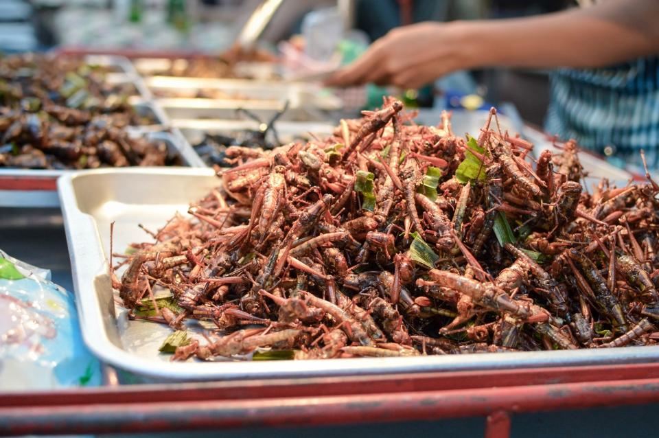 Mangiare insetti tra i banchi di un mercato thailandese