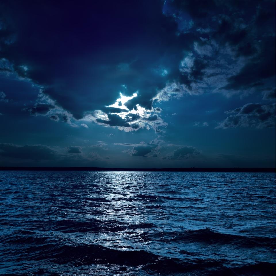 Mar de estrellas, Las Maldivas
