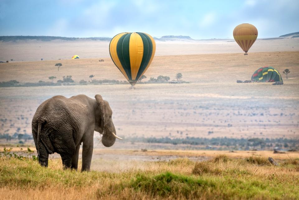 La réserve du Masai Mara (Kenya)