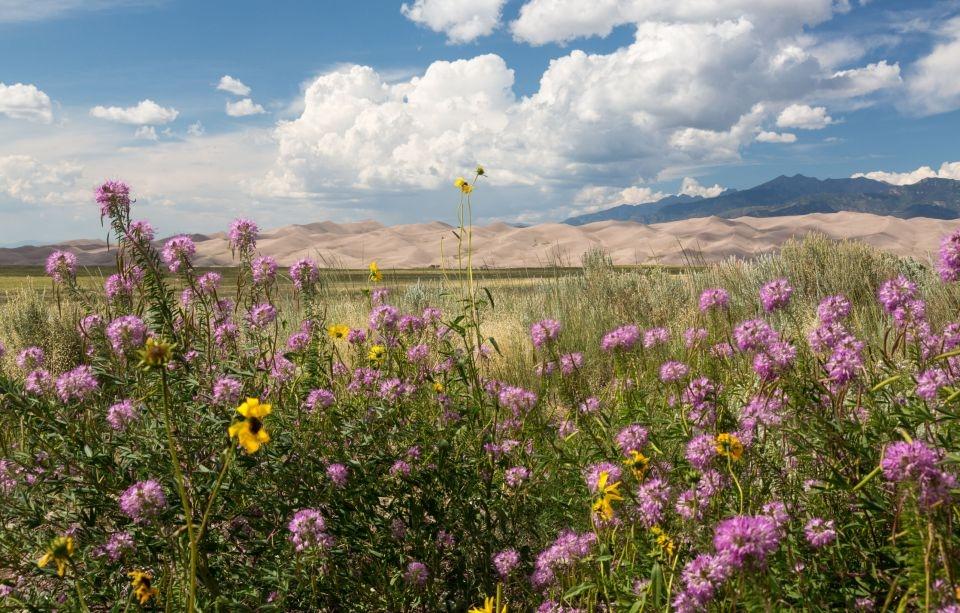 Las Grandes Dunas del Colorado en Estados Unidos