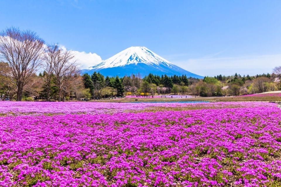 El Monte Fuji en Japón