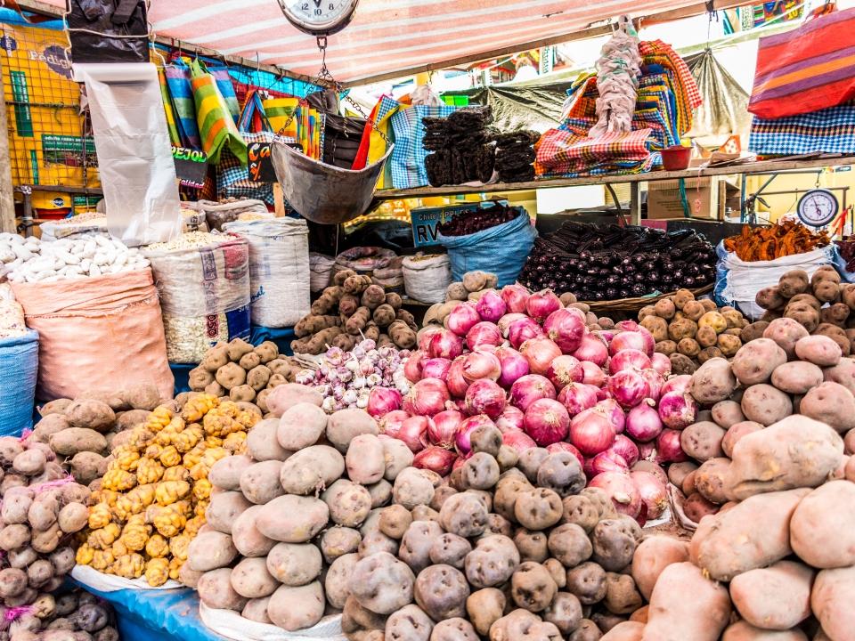 Se cultivan más de 3.000 tipos de patatas