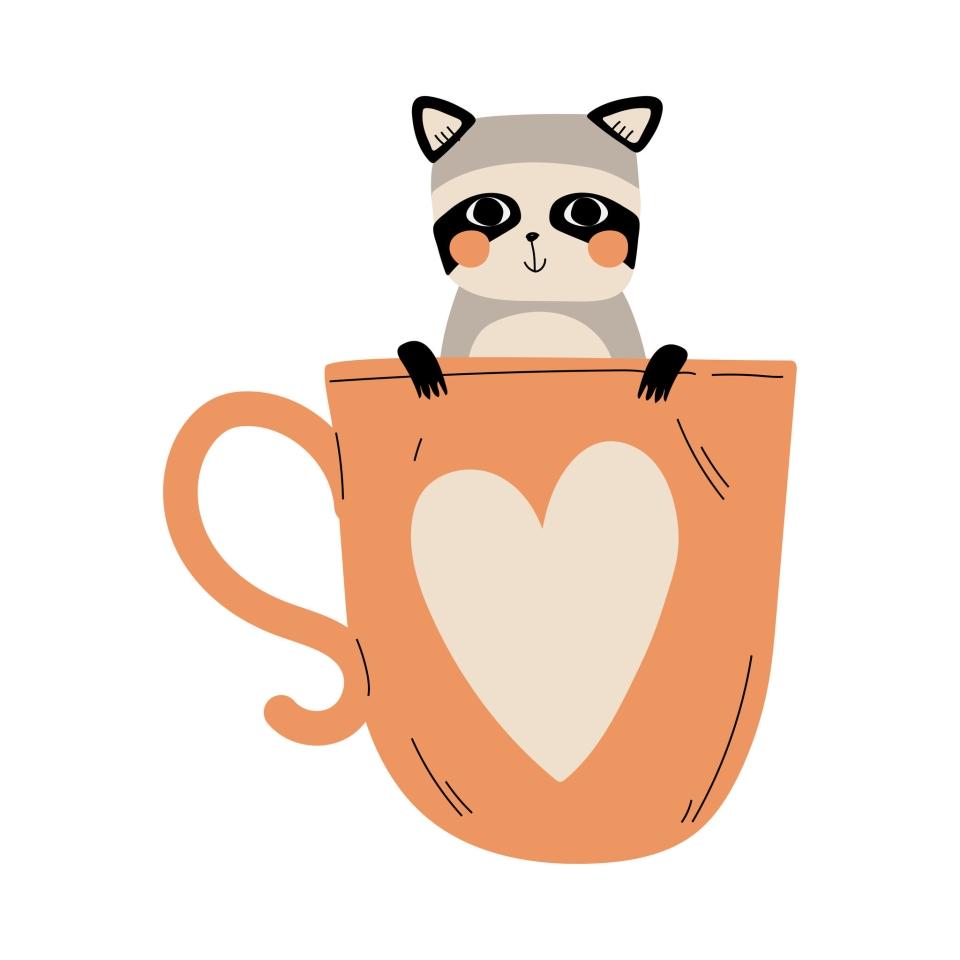 Raccoon café, le café aux ratons laveurs à Séoul