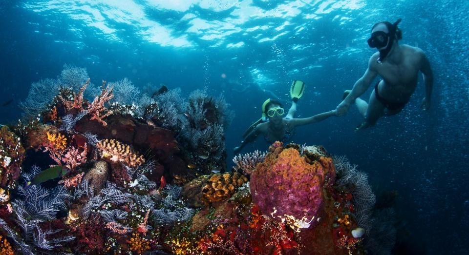 Saint John's Reef, Egitto