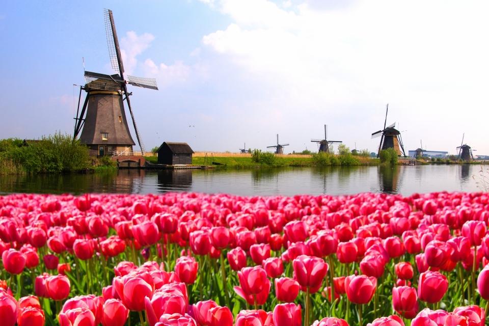 7. Die Niederlande