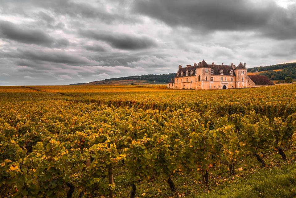Les vignobles de Bourgogne