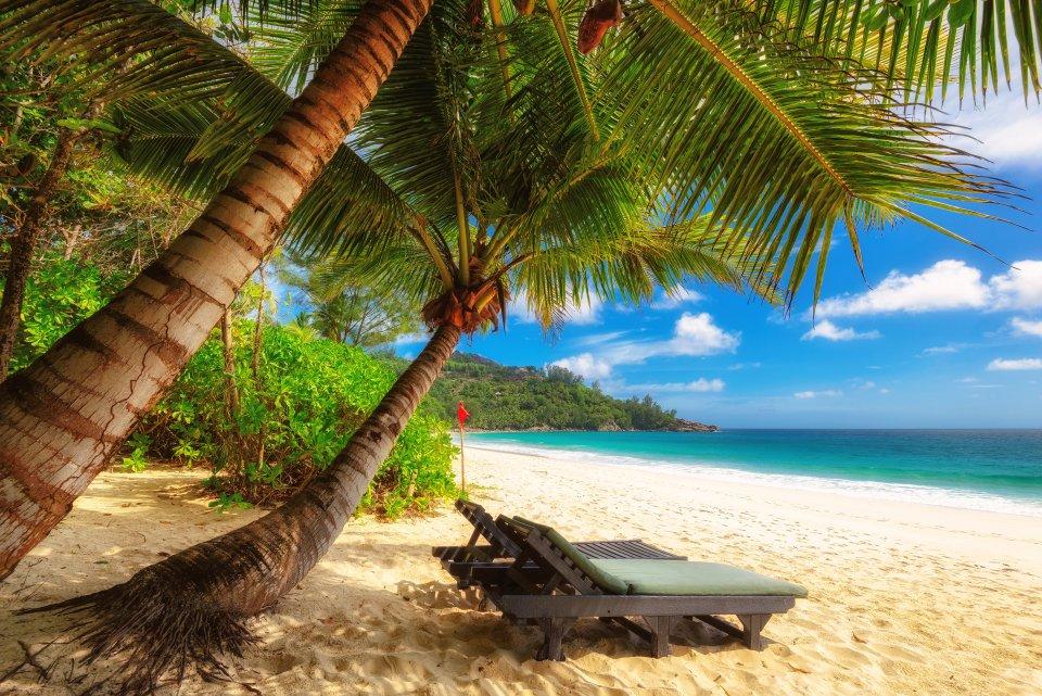 Marzo: Le Seychelles