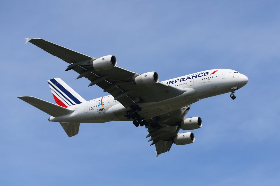 Air France wants to offset emissions from all its domestic flights.