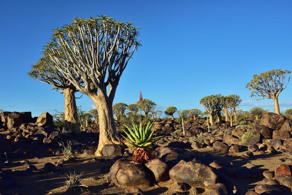 6. Keetmanshoop, Namibia